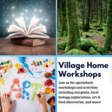 Winter Term Workshops